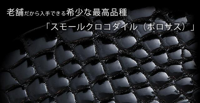 crocosaifu002